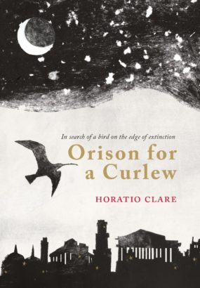 orison for a curlew cver